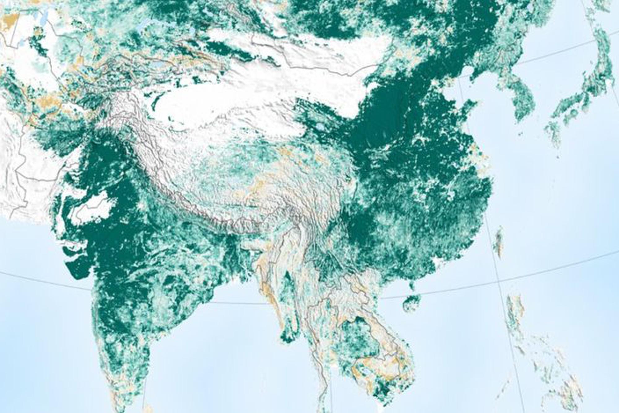 """El estudio de la NASA que muestra que la Tierra es """"más verde"""" que hace 20 años gracias a China e India"""