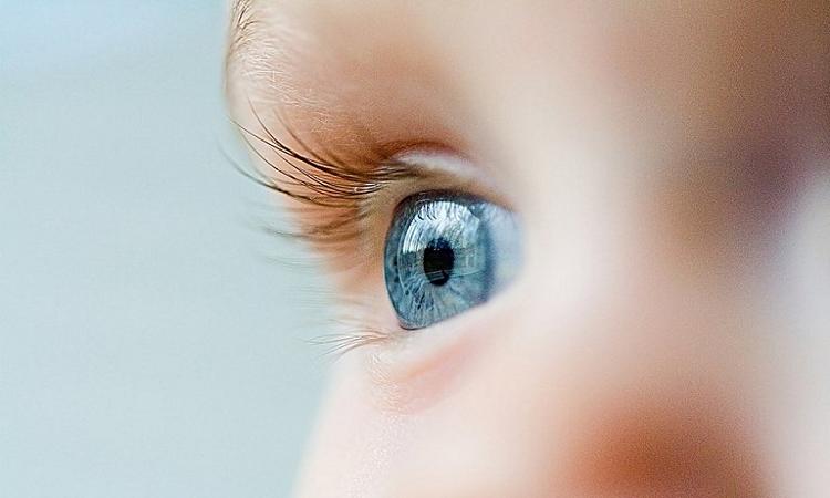 las-dificultades-de-la-vision-que-mas-afectan-a-los-ninos