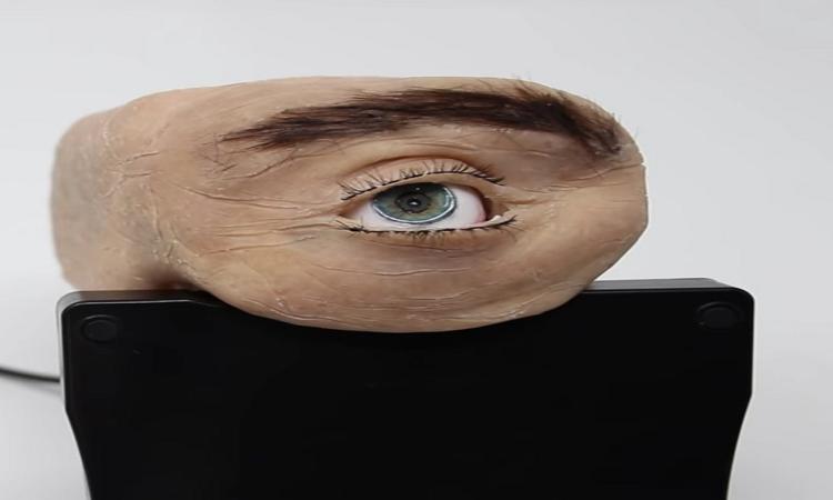 crearon-una-webcam-con-ojo-con-aspecto-humano