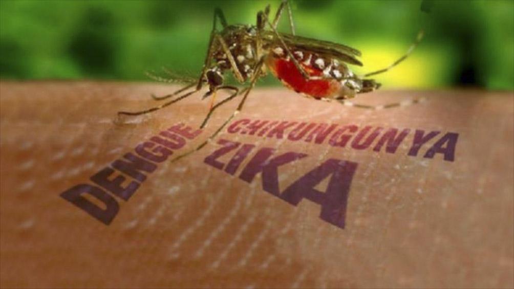 investigadores-argentinos-descubren-mecanismo-clave-de-los-virus-de-dengue-y-zika